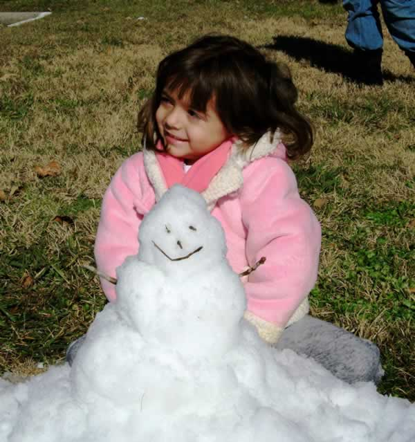 Blown Snowman in Houston