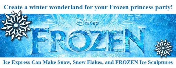 Frozen Themed Parties in Houston