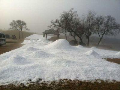 Winter Theme Party Snow In Houston Fun